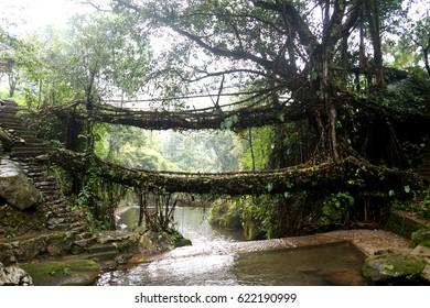 The Double Decker Root Bridge over Umshiang river, Cherrapunjee, Meghalaya, India