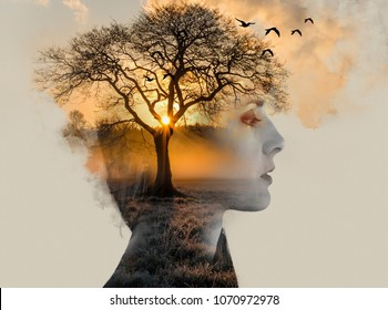 double exposure, beautiful woman with tan fused with a sunset and a lonely tree, loneliness concept
