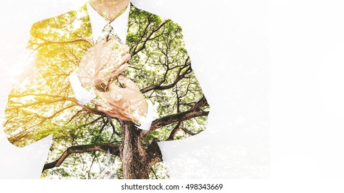 Double Exposure Businessman in Suit with Big Tree with Bright Sunlight and copy space