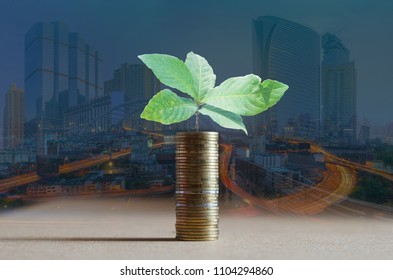 double exposure of coin staking on wooden board and green plant growing saving with night building in city background. financial and saving money concept.
