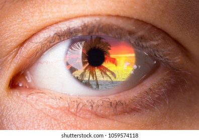 double exposure effect. palm and ocean inside human eye