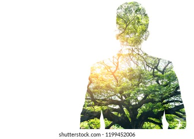 The double exposure image of the businessman standing during sunrise overlay with forest image and white copy space. The concept of nature, freedom, environment and business.