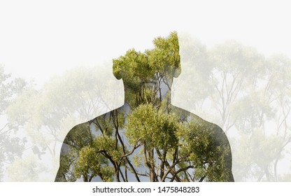 Double exposure silhouette head portrait of a thoughtful man combined with photograph of forest landscape. Ecology, freedom, environment