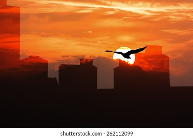 Double exposure of  Sunset over some of high old building and Flying eagle on sky