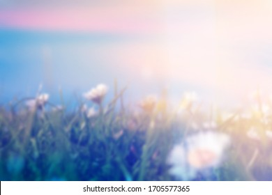 A double exposure with vintage light leaks of a close up of blurred daises (Bellis perennis) in a meadow, With an abstract, experimental dream like edit.