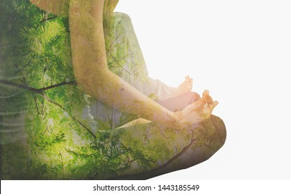Double exposure-tranquility yoga woman meditation to purify mind, branch large tree spreading on isolated white background, concept of spirituality and suffering contemplation,restoration,mental state