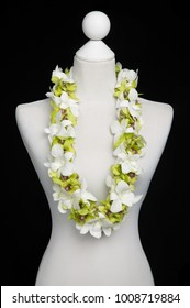Double Green Hawaii flowers lei necklace made from Dendrobium Green (Burana Jade) and Dendrobium Big White orchid flower on Mannequin with studio black background.