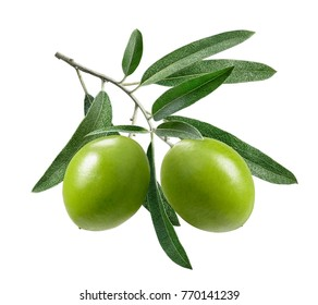 Double green olives isolated on white background as package design element