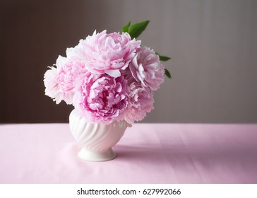 Double Peony Fresh Cut Flowers in vase with copy space.