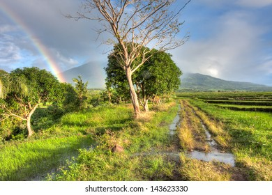 A double rainbow appears in a rice plantation at the base of Mount Isarog, in the Philippines.