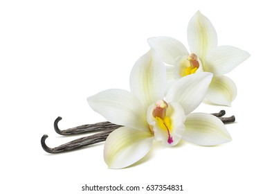 Double vanilla flower 2 isolated on white background as package design element