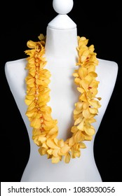 Double Yellow Hawaii flowers lei necklace made from Yellow Mokara orchid flower on Mannequin with studio black background.