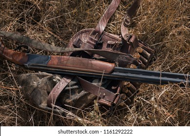 double-barreled shotgun and bandolier in the grass