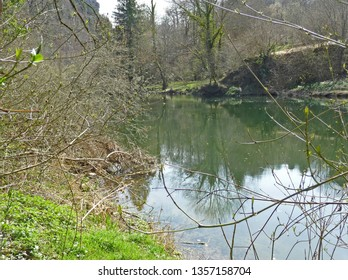 The Doubs river (area of Goumois, Jura) with tree branches and a wall