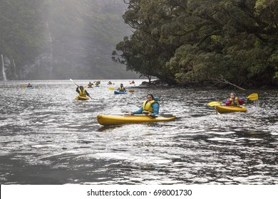 Doubtful Sound, New Zealand: October 18, 2015: Group of young adults kayaking in Doubtful Sound. They are sailing towards the camera and all are wearing hi-viz life-jackets.
