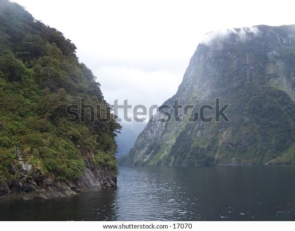 Doubtfull sound New Zealand