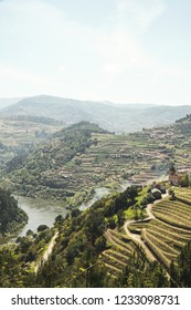 Douro river landscapes in Portugal. One of the most famous wine terroirs in the world.