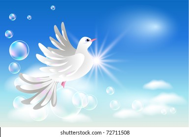 Dove in the clouds and sunshine. Raster version of vector.