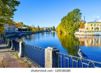 Dove on autumn river embankment . Autumn city river reflection view. Autumn river embankment in Saint-Petersburg, Russia. Autumn Fontanka river embankment view