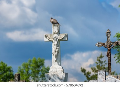 Dove sitting on a white stone cross with crucified on an old cemetery in nature under cloudy sky. Symbol of resurrection, life after death...