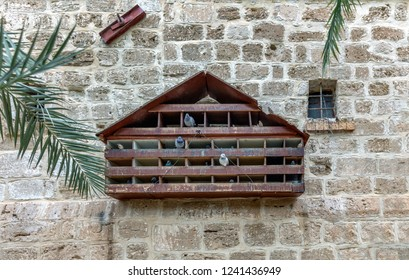 Dovecote on the wall of the Saint Gerasimos ( deir Hajla ) Monastery near to Jericho, Israel