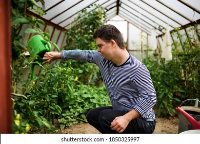 Down syndrome adult man watering plants in greenhouse, gardening concept.