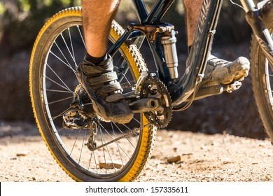 Downhill mountain bike on a forest path