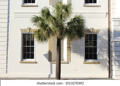 Downtown Charleston architecture, palm trees, and cobble stone streets in South Carolina