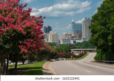 Downtown Raleigh skyline with crepe myrtle trees in bloom