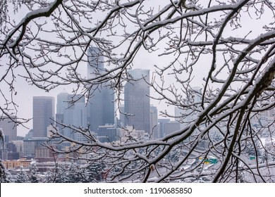Downtown Seattle framed by snow covered branches