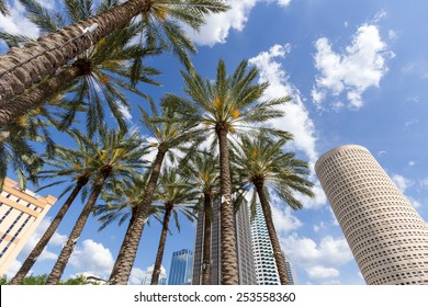 Downtown Tampa, Florida daytime