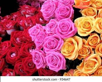 Dozens of red, pink and peach roses in a Paris market