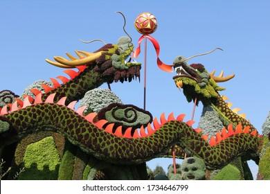 Dragon Art Sculpture Made of Flowers