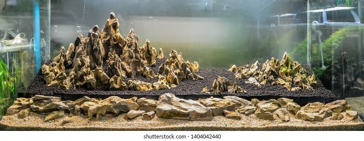 dragon stone arrangement on soil substrate for making hardscape of aquatic plant tank.
