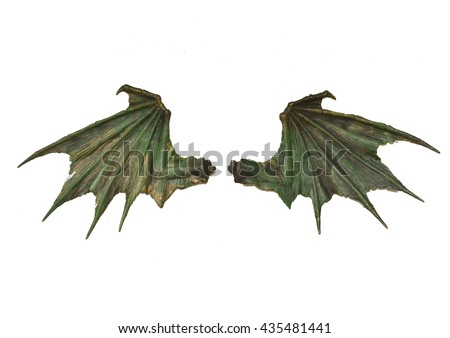 Dragon wings isolated on white background