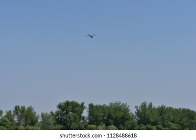 Dragonfly hovering against blue sky with trees in the background