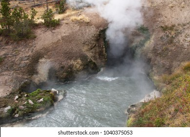Dragons Mouth Spring in Mud Volcano Area in Yellowstone National Park in Wyoming in the USA