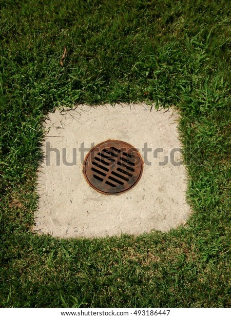 Drain surrounded by Grass - Illustrative