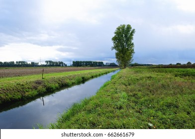drainage ditch with green grass