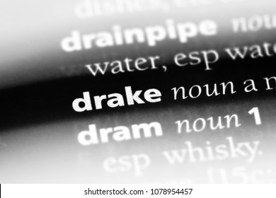 drake word in a dictionary. drake concept