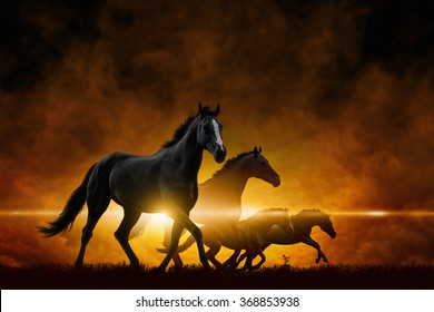 Dramatic apocalyptic background - four running black horses, red glowing clouds