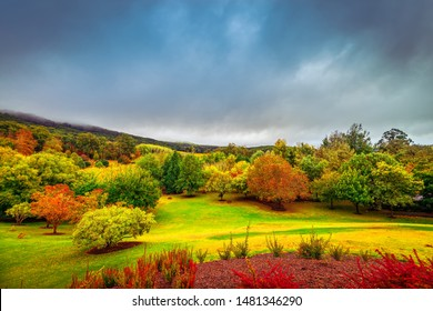 Dramatic autumn scene with colorful trees under stormy clouds in Mount Lofty, Adelaide Hills, South Australia