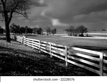 Dramatic Black and White Horse Farm Scene
