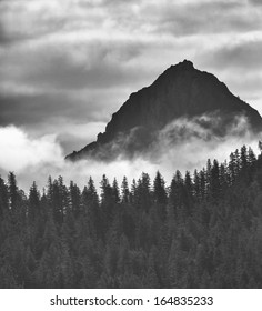 Dramatic Black and White Mountains Forests Fog Fjords Seward Alaska