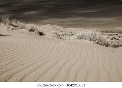 Dramatic Black and White view of Kelso dunes with sepia toning
