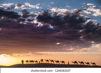dramatic clouds above camel Caravan in the desert of sahara