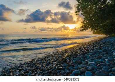 Dramatic coast with rocky volcanic beach, green tree, waves and amazing sunset, Limbe, Cameroon
