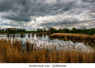 dramatic dark clouds and dead standing trees reflecting in the lake - swamp landscape with reed in Germany Harz