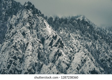A dramatic and dark winter snowfall on a mix of pine trees and jagged peaks in Big Cottonwood Canyon, part of the Wasatch Mountains outside Salt Lake City, Utah, USA.