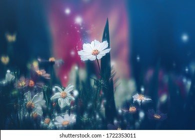 Dramatic flower background; Nature Background